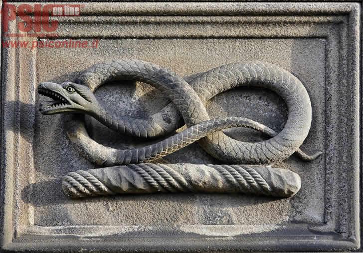 Il serpente sul mio cammino - definire le esperienze